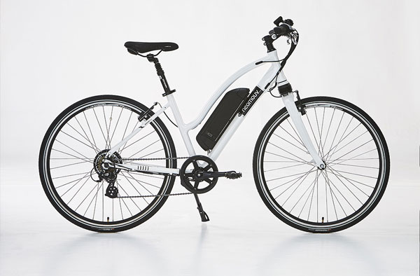Electric bikes rental