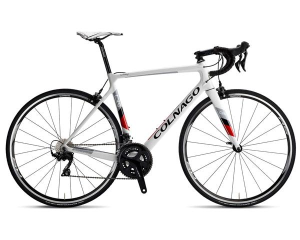 Colnago road bike rental